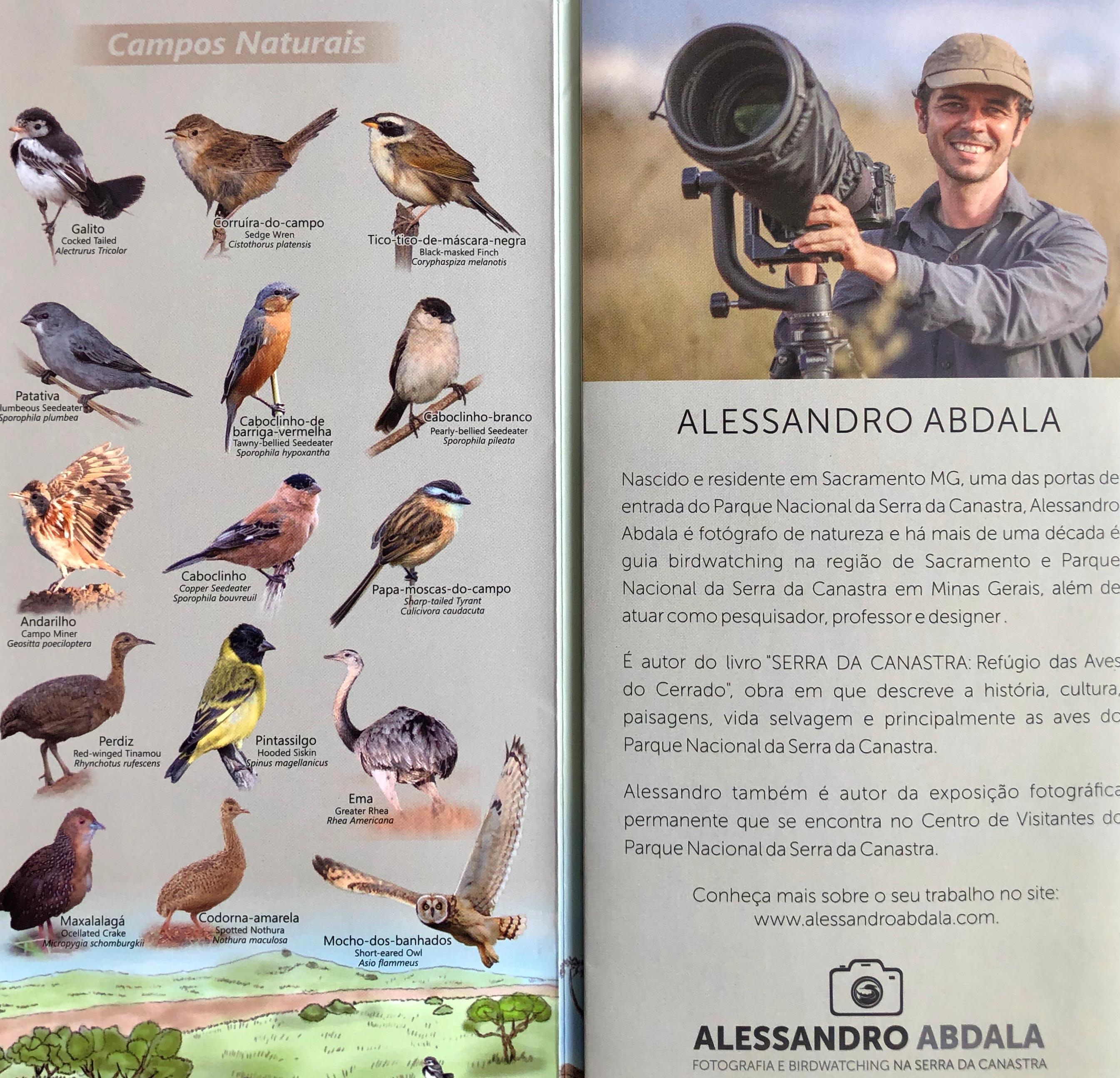 Bird Watching – SERRA DA CANASTRA – www serradacanastra com br